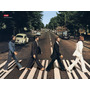 Dvd Karaokê Especial Videoke Dvdoke The Beatles