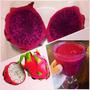 Kit Pitaya 2 Cores - Cacto Dragon Fruit Sementes Para Mudas
