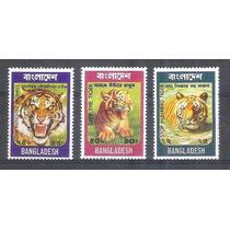 Bangladesh 1974 Fauna Felinos Tigre Série Mint 3 Selos.