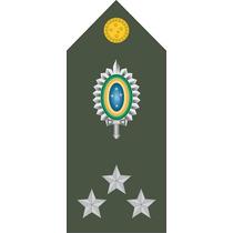 403 Platina (ombreira) General De Divisão (par)