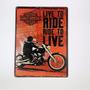 Placa Decorativa Metal Vintage Live To Ride Harley 30cmx40cm