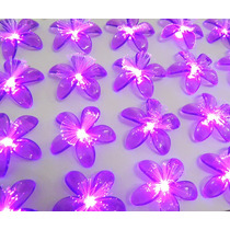 Pisca Pisca Led Flor Natal 20 Lampadas Festa Decoracao Loja