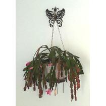 Suporte Decorativo De Aço P/ Pendurar Plantas E Vasos