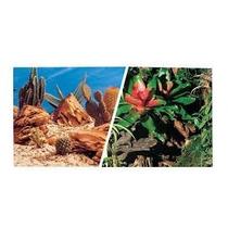 Painel Decorativo De Fundo D Terrário Tropical Deserto 2face