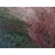 Quadro Pintura Abstrata Moderna Original