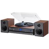 Toca Discos Aria Bluetooth Lp Fm Usb Gravação Raveo