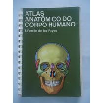 Atlas Anatômico Do Corpo Humano - E. Ferrán De Los Reyes