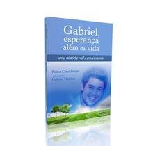 Gabriel, Esperança Além Da Vida Nilton Cesar Stuqui Volume 1