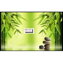 Bambu Mosso Artificial Com 1,80 De Altura ( Promoção )
