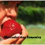 25 Sementes Morango Gigante Dôce Exótico Importado