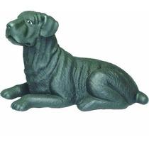 Brinquedo Para Cães Miniatura Dog Alemão Pet Shop