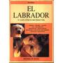 El Labrador Y Los Otros Retriever - Rio Raikes