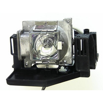 Vivitek Projector Lâmpadas D825ms
