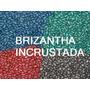 Sementes Brachiaria Brizantha Incrustada 10kg Frete Grátis