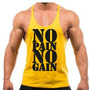 Kit 4 Camisetas Regatas Academia No Pain No Gain Musculação