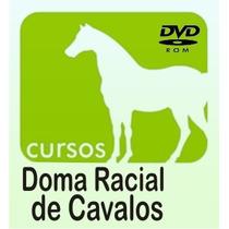Curso De Doma De Cavalos