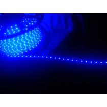 Mangueira Fita Led Azul 3528 Siliconizada 5 X 7 Mm 110 V 80m
