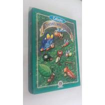 Livro* Coleção Fantasia Dos Insetos - Ciranda Cult- Lojaabcd