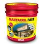 Mantacril Fast Balde 12 Kg Impermeabilizante Manta Líquida