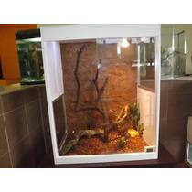 Terrário Para Iguanas E Répteis