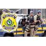 Prf Alfa Policia Rodoviaria Federal Curso Completo