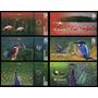Atlantic Forest Floresta Atlântica 7+8+9 Aves 2015 3 Cédulas