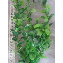 Plantas Em Plástico P/ Dec. De Aquários, Vasos G008