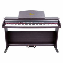 Piano Digital Fenix Tg8810 88teclas C/banco,11962 Musical Sp