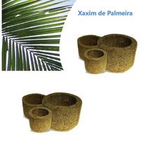 Kit 6 Vasos Xaxim De Palmeira P/ Orquídeas E Samambaias