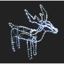Rena De Led Branca Natal Fixa Decoração Interna / Externa