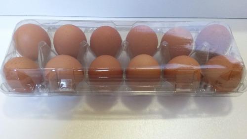 Embalagem Para 12 Ovos De Galinha 300 Unid Frete Grátis