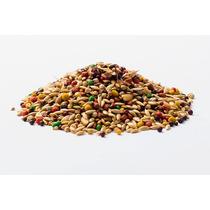 Mistura Com Sementes Para Canários Belga Minas Nutri 10kg