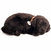 Cachorro Labrador Preto Que Respira Perfect Petzzz Pelúcia