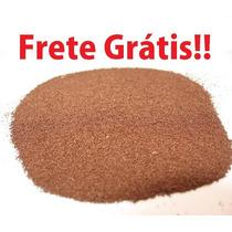 Cistos (ovos) De Artêmia Salina -alta Eclosão- Frete Grátis!