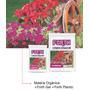20 Kg De Substrato Forth Floreiras Adubado E Com Hidrogel