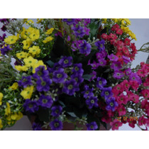 Buque Flor Fortuna Artificial 32flores 27cm- Consulte Frete