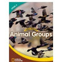 World Windows: Animal Groups - Book - Level 3