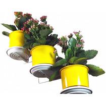 Jardim Vertical - Suporte De Parede Para 3 Vasos Pequenos