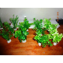 Plantas Artificiais De Aquários Pacote Kit Completo