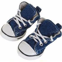 Calçado, Sapato, Tênis, Bota Para Cães All Star