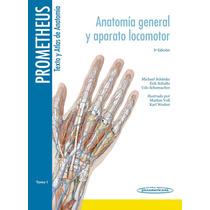 Texto Y Atlas De Anatomía T1 De Prometheus