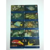 Cartão Telefônico Animais Marinhos S048 Série Completa