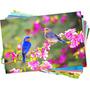 10 Fls Papel Fotográfico Glossy Foto À Prova Dagua A4 180g