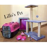 Kit Gato Completo + Arranhador