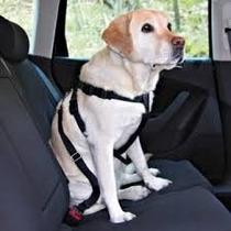 Cinto De Segurança Peitoral Obrigatório Para Cães Pq E Gr