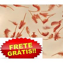 Artemia De Água Doce/ Branchonetas +spirulina Frete Grátis