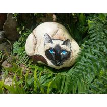 Pedra Pintada Gato Siames