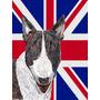 Bull Terrier Com Engish Union Jack Bandeira Britânica Bande