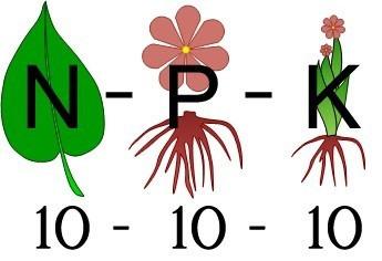 Adubo De Crescimento 10-10-10 Npk Formação 5kg