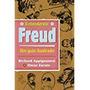 Livro Entendendo Freud Guia Ilustrad Appignanesi, Richa Original